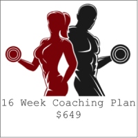 16 Week Coaching Plan for $649