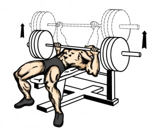 Bench Press Program