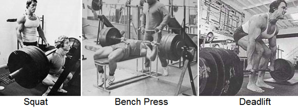 3 Powerlifts - Squat Bench Press and Deadlift