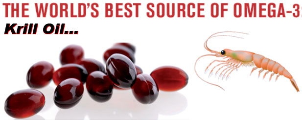 Better Than Fish Oil – (the best source of omega 3's)