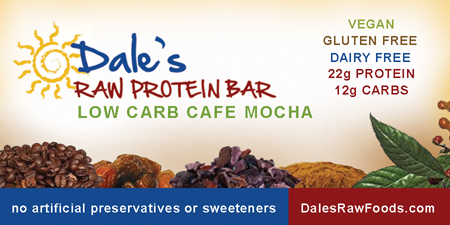 Dale's Raw Protein Bar Low Carb