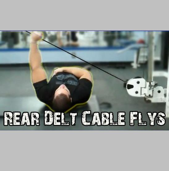 Killer rear delt exercise laying cable fly variation for Floor underhand cable fly