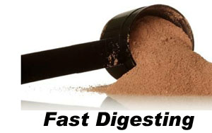 Fast Digesting Protein Whole Foods