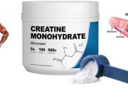 Creatine Supplement Info 101