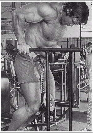 Arnold Doing Weighted Dips