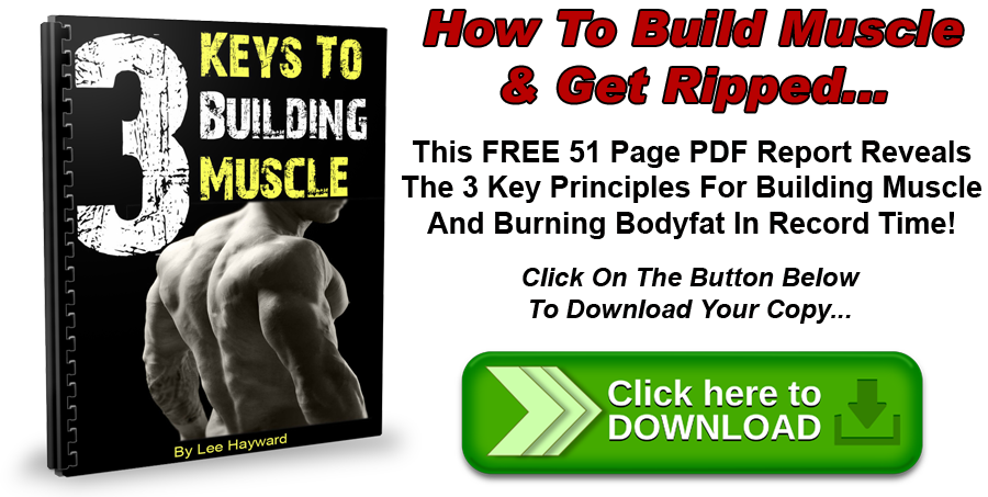 Download The 3 Keys To Building Muscle - PDF