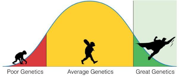 Natural Genetics Chart
