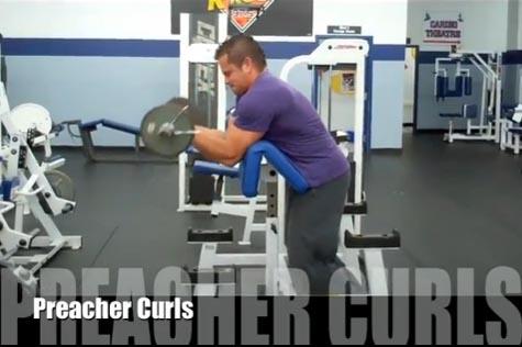 Bicep Preacher Curls