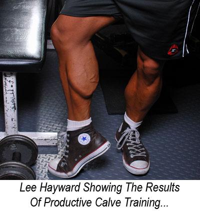 Lee Hayward's Calfs