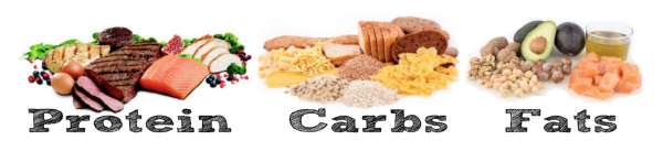 Protein Carbs and Fat