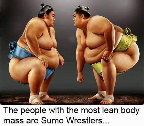 The people with the most lean body mass of any human being on the planet are Sumo Wrestlers