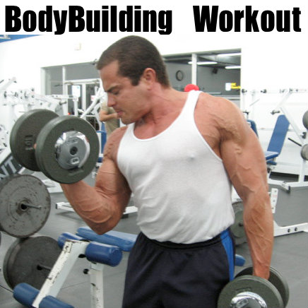 4 day bodybuilding workout plan  lee hayward's total