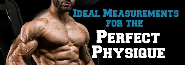 Ideal Measurements for a Bodybuilding Physique — Lee Hayward's Total
