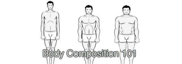 Body Types 101