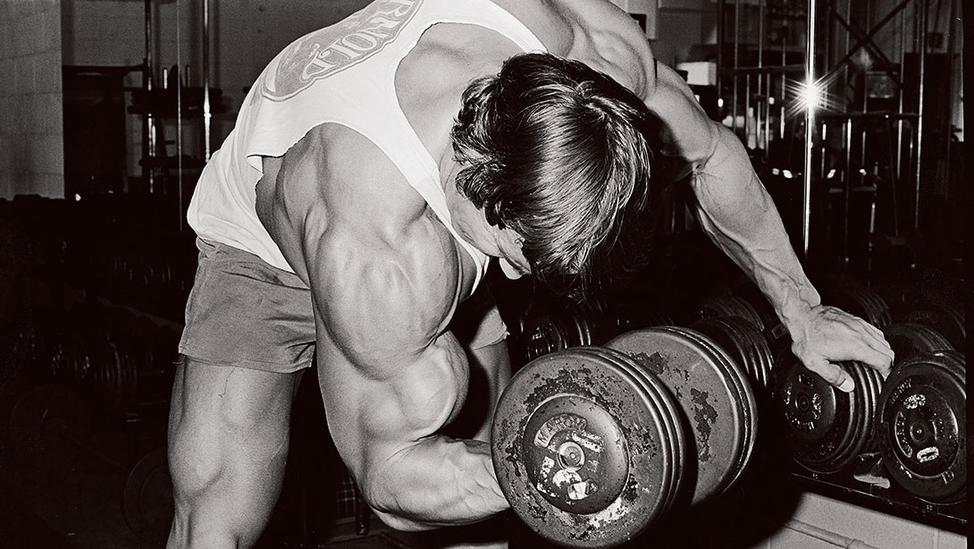 Arnold Concentration Curl